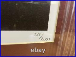 Damon Albarn Blur Gorillaz Signed VERY RARE Display Limited Edition COA
