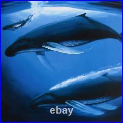 Wyland A Sea of Life Signed Limited Edition Art COA