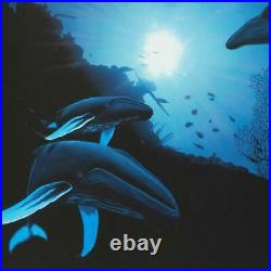 Wyland Whale Vision Signed Canvas Limited Edition Art COA